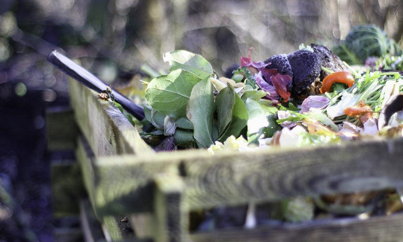 image - How to Start a Composting Heap in Your Garden