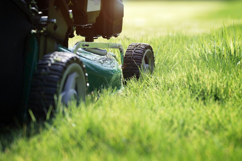 image - Spring Lawn Care - How to Get Your Yard Ready for Warmer Temperatures