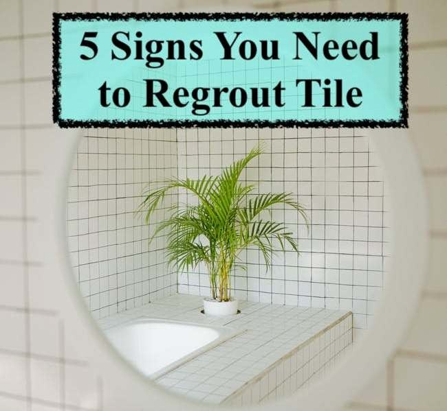 image - 5 Signs You Need to Regrout Tile