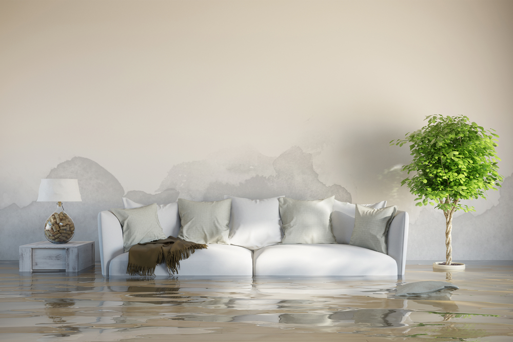 image - 5 Tips for Dealing with Water Damage after a Storm