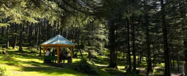 Featured image - How to Build a Gazebo for Your Home - A Simple Guide