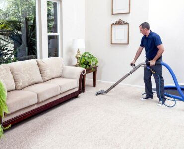 Featured image - How to Remove Mold from Your Carpet