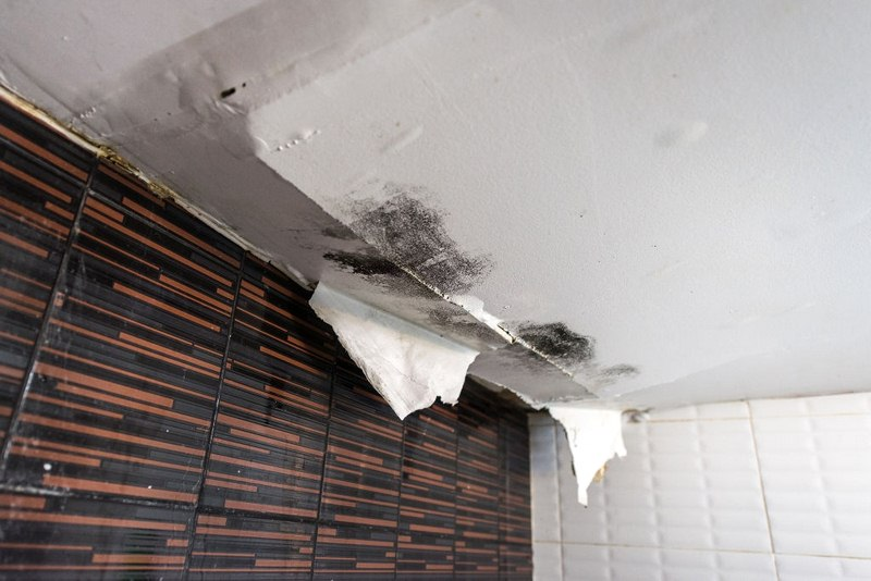 image - Early Water Leak Detection Helps Prevent Structural Damage