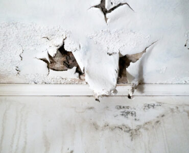 Featured image - 5 Tips for Dealing with Water Damage after a Storm