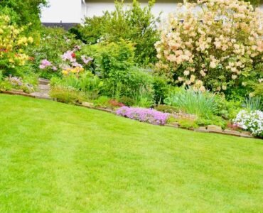 Featured image - How to Do Landscaping on Your Own