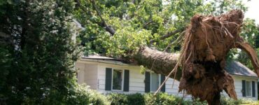 Featured image - Storm Damages and What They Mean for Your Home and Family