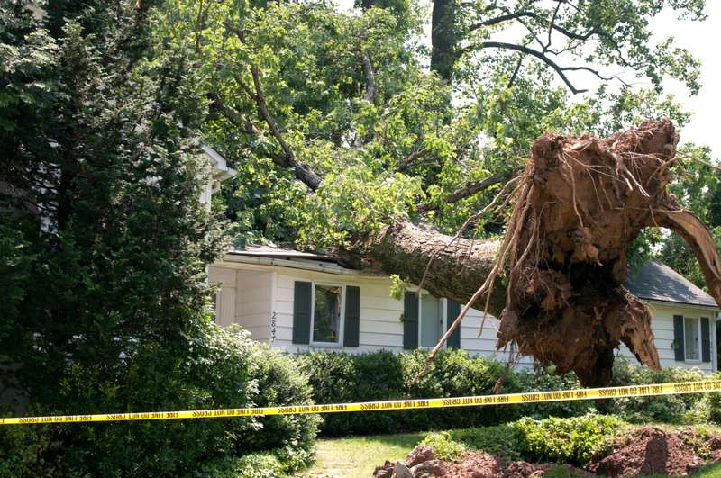 image - Storm Damages and What They Mean for Your Home and Family
