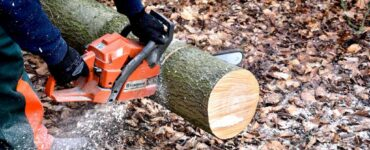 Featured image - How to Pick the Best Chainsaw for Your Money