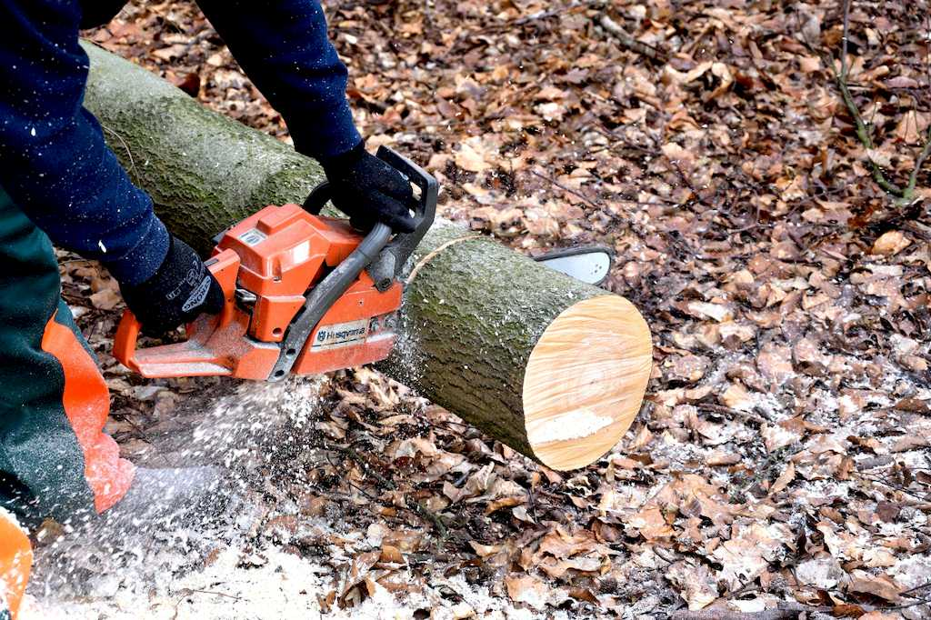 image - How to Pick the Best Chainsaw for Your Money