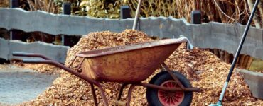 Featured image - What is Mulch and How Does it Benefit Your Garden