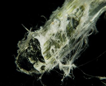 Featured image - Health Matters - Why Was Asbestos Banned