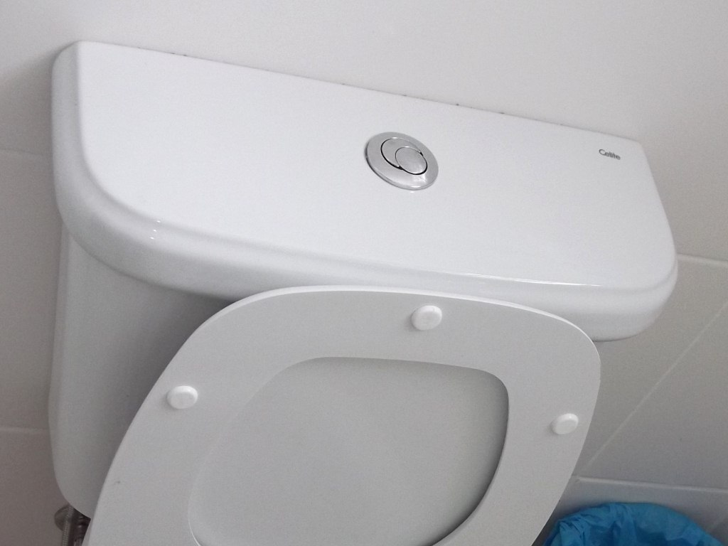 image - How to Repair a Toilet Flush Button