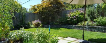 Featured image - 10 Ways to Make Your Backyard Appear Larger Than It Is