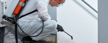 Featured image - Pest Control Treatment: The Before and After Guide