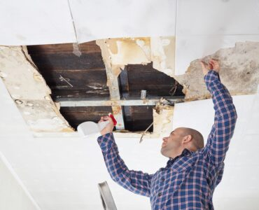 Featured image - 5 Questions to Ask Before Choosing a Mold Removal Company