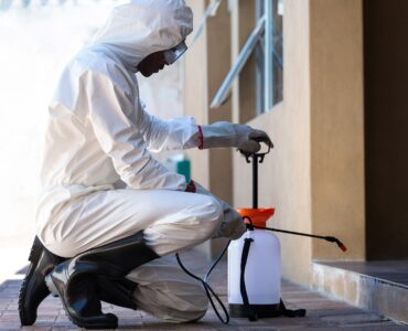 Featured image - Why You Should Hire Pest Control Company From Long Island