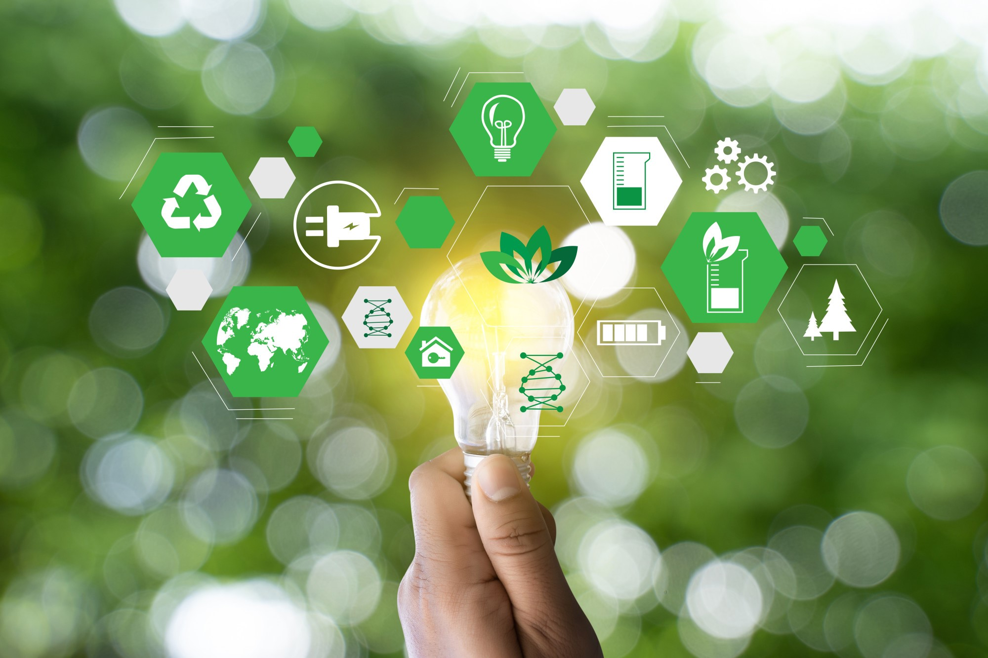 image - The Art of Going Green: How to Become a Sustainable Business