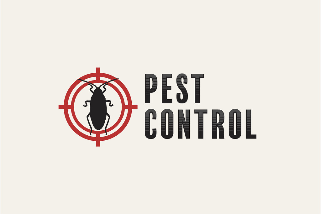 image - Is Monthly Pest Control Really Necessary