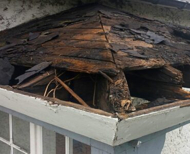 Featuredd image - Reasons Why You Need to Have Your Leaking Roof Repaired on Time