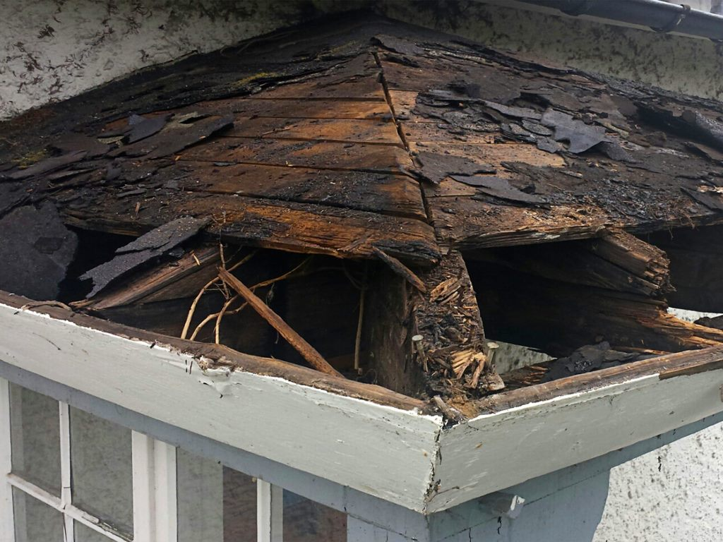 image - Reasons Why You Need to Have Your Leaking Roof Repaired on Time