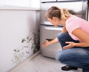 Featured image - Is Your Home a Hazard? 5 Mold Health Risks That You Need to Know
