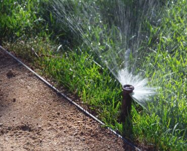 Featured image - Why You Need a Reticulation System