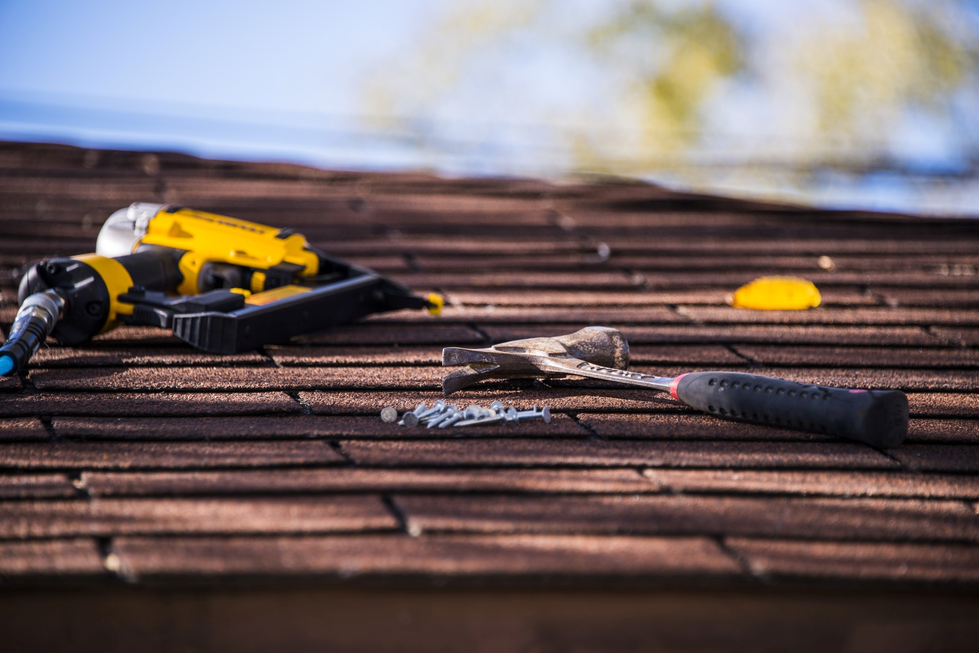 image - 5 Key Things You Need to Know About Roof Maintenance
