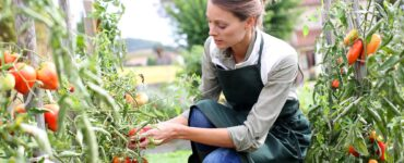 Featured image - How to Start a Vegetable Garden from Scratch: A 7-Step Guide