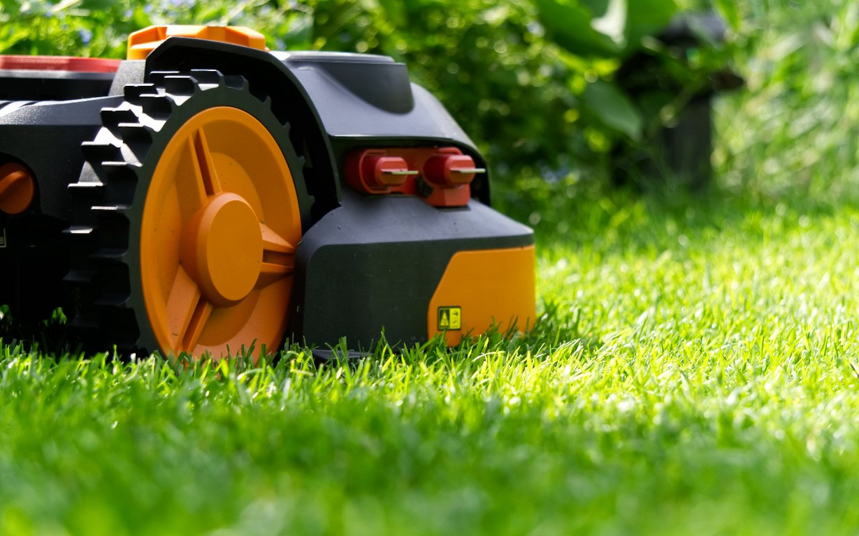 image - Making Your Grass Greener Than the Other Side: Lawn Maintenance Tips for the Summer Heat