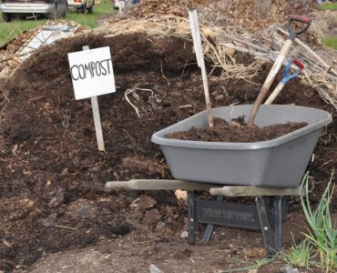Featured image - What is Safer to Use - Mulch or Compost