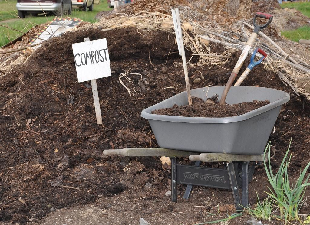 image - What is Safer to Use - Mulch or Compost?
