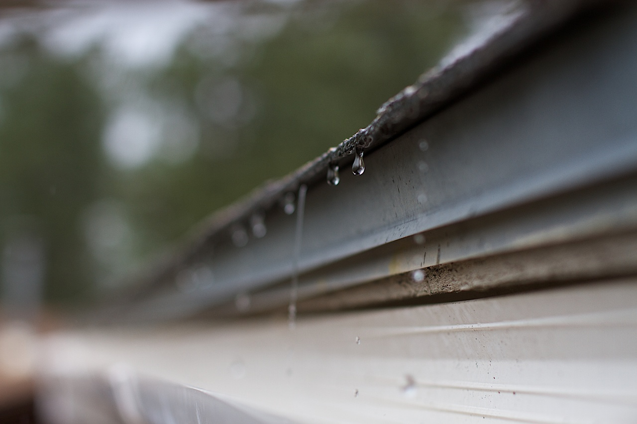 image - Why Clean Gutters are Vital to Home Maintenance
