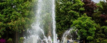 Featured image - 4 Factors to Consider When Choosing Pond Fountain