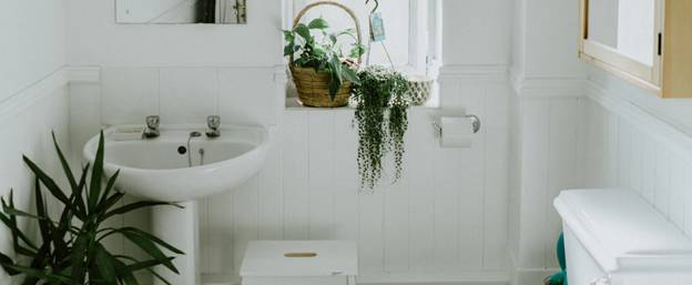 image - Add Some Plants to the Decor: