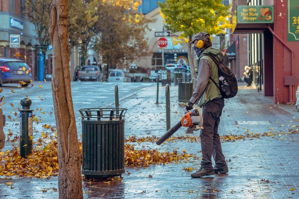 image - What Are the Factors to Consider While Selecting the Best Battery Powered Leaf Blowers