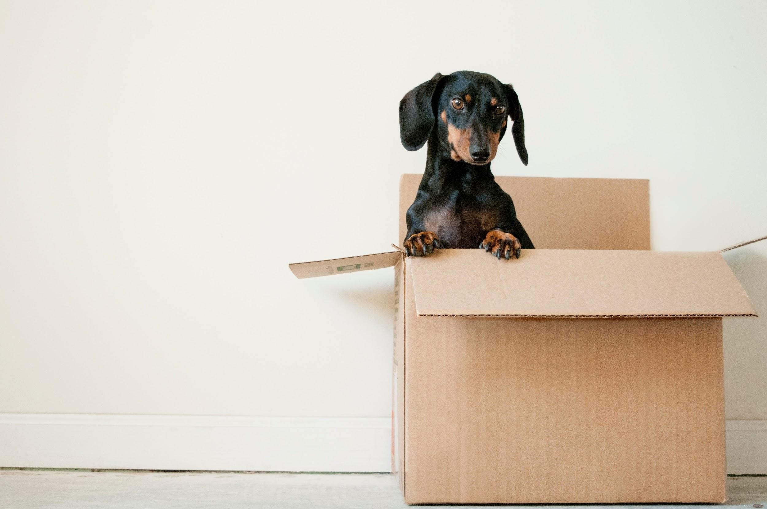 image - Organize Your Packing Process Logically