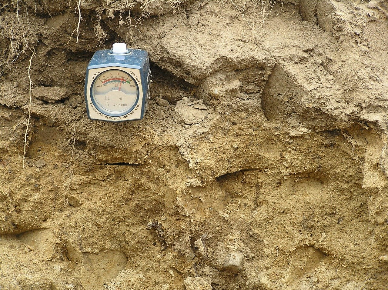 image - How to Change Soil pH - Best Methods to Increase and Lower Soil pH