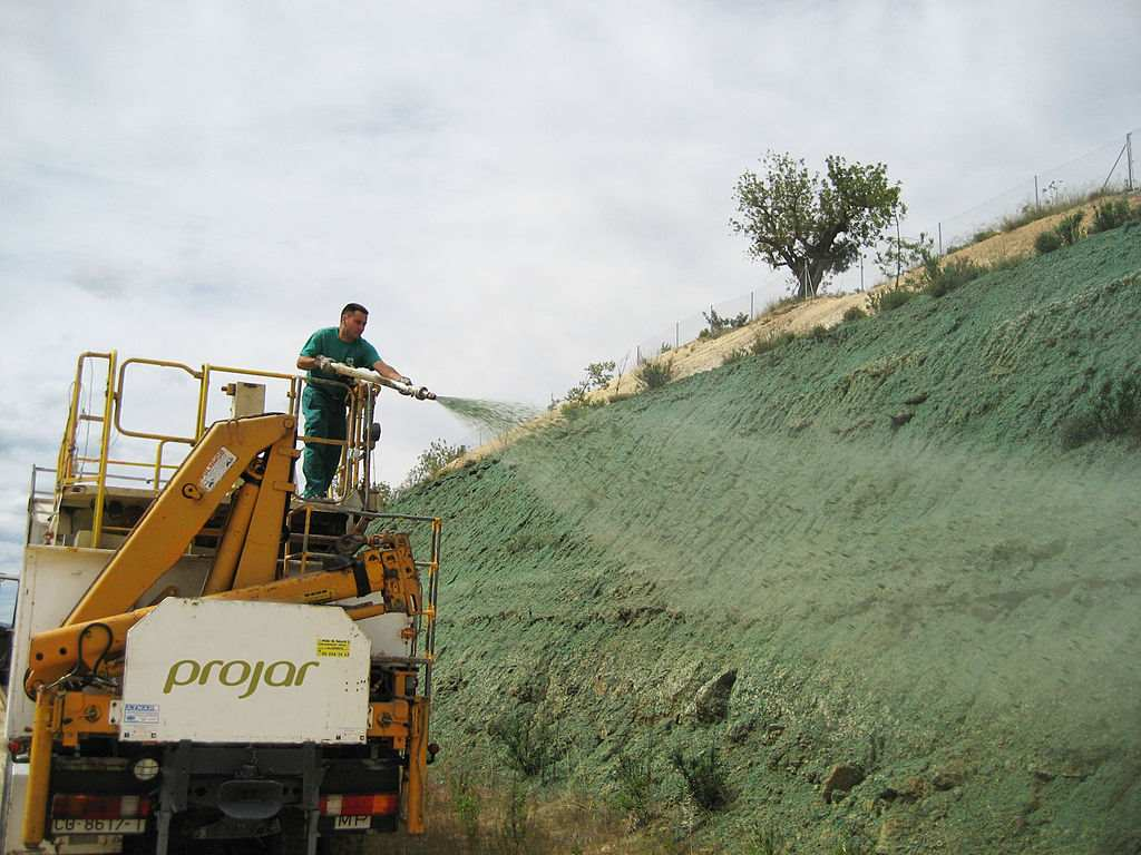 The Ultimate Guide to Hydroseeding