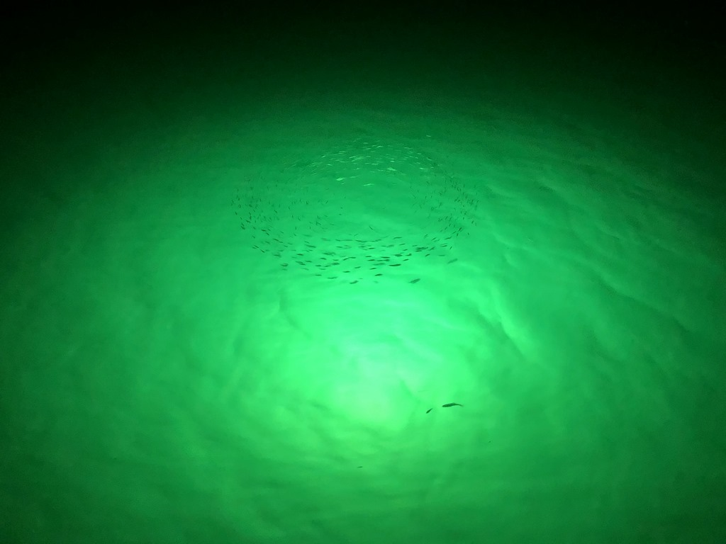 image - How Underwater Dock Lights Improve Your Waterfront Property