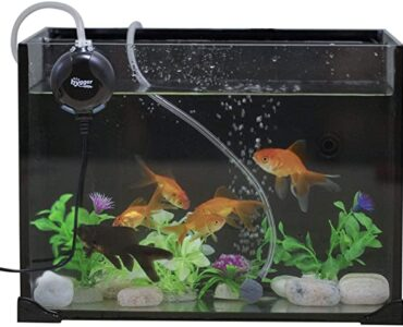 Featured image - How to Install Aqua Culture Aquarium Air Pump