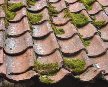 Featured image - How Routine Roof Maintenance Can Prevent the Need for Costly Repairs