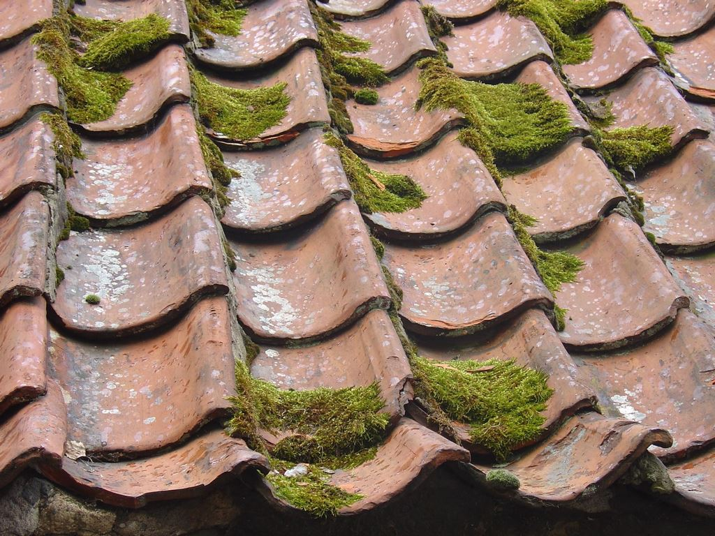image - How Routine Roof Maintenance Can Prevent the Need for Costly Repairs