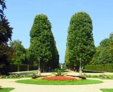 Featured image - Qualities You Need to Nurture to Become a Good Landscape Architect