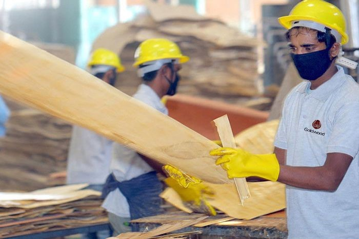 image - Looking For The Top Plywood Suppliers in India?