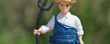 Featured image - The New Farmer Bill
