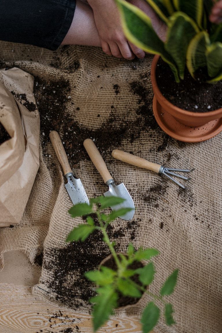 image - Choosing the Best Garden Shoes