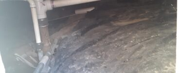 featured image - Top Reasons to Have Your Crawl Space Waterproofed