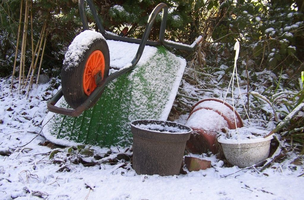 5 Essential Gardening Tips for the Winter Season