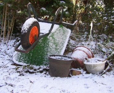Featured image - 5 Essential Gardening Tips for the Winter Season