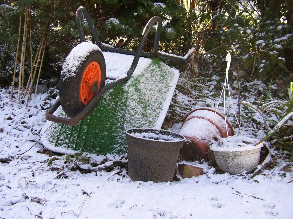 image - 5 Essential Gardening Tips for the Winter Season